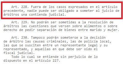 nic-chile-articulo-228